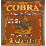 Jeu western cobra 012-053 phosphor bronze (GEEFL)